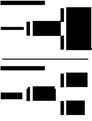 Magnolia Dunit Pedigree
